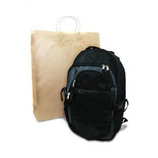 Picture of Brown Kraft Bag Large 250