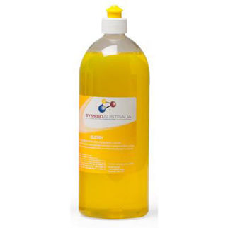 Picture of Sudsy Dishwashing Liquid 2l